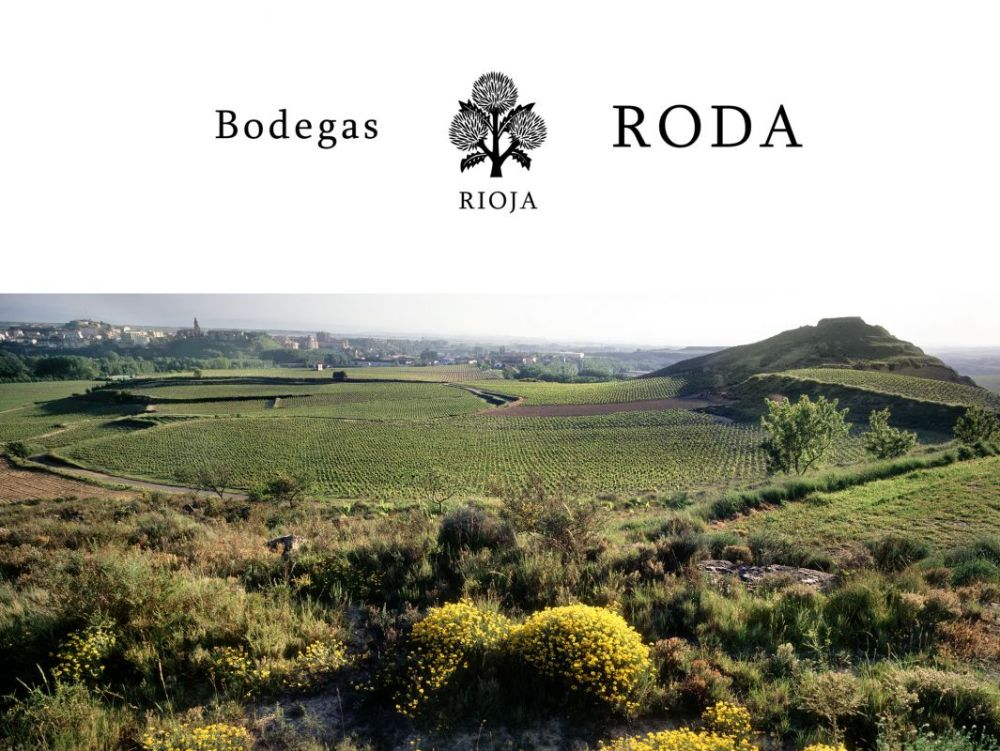 RODA-000-PANORAMICA
